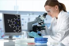 Исследование гормональной регуляции