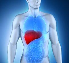 Симптомы поражения печени метастазами