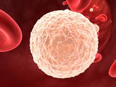 мало лейкоцитов в крови у взрослых что это