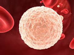 Анализ крови на лейкоциты