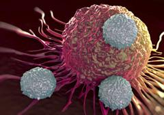 Фагоцитарная активность лейкоцитов
