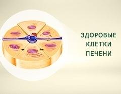 лечение печени гепатит с