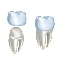 Протезирование зубов врач как называется