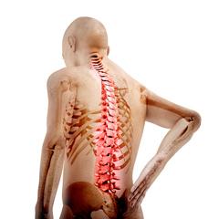 Боли спина в области поясницы при беременности