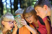 Лучшие летние лагеря для детей
