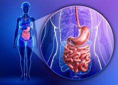 как определить что кишечник не здоров