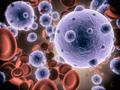 Кровь на напряженность иммунитета к краснухе thumbnail