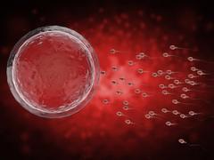 Мужское бесплодие: причины, виды, диагностика и способы лечения бесплодия у мужчин