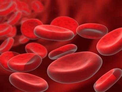 Количество эритроцитов в периферической крови норма thumbnail