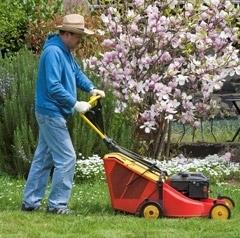 Купить аккумуляторную газонокослилку