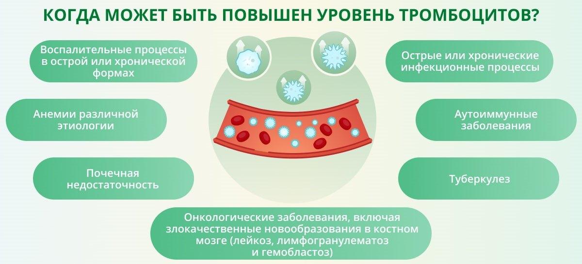 Что показывает анализ на тромбоциты? Расшифровка показателей, норма,  причины повышения и понижения тромбоцитов в крови