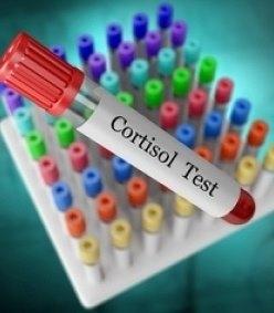 Значимость кортизола